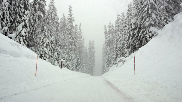 snow640